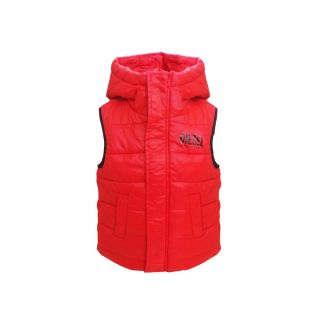 Shiny Quilted Vest With Hood
