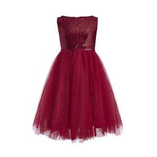 Bright Wine Colour Mesh Skirt Dress