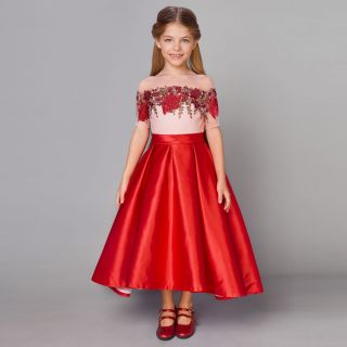 Gorgeous Embroidered Dress With Long Fluffy Skirt